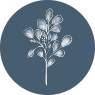 Chosen Event Design + Planning | Oklahoma Wedding Planner & Floral Design